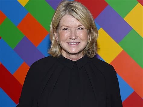 Martha Expands Empire by Martha Stewart On Kmart We Should Turned It Into