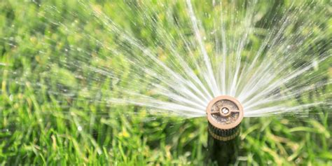 tips  choosing  correct sprinkler head drip depot