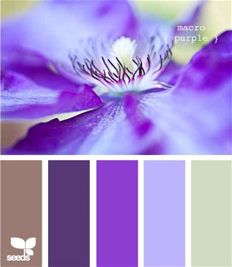 purple color combination 24 best color combinations purple brown images on