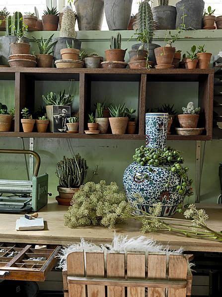 green workshop  cactus plants plant pots  office