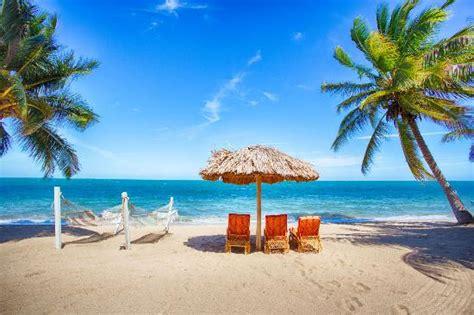 jaguar reef resort belize jaguar reef lodge spa updated 2017 prices resort