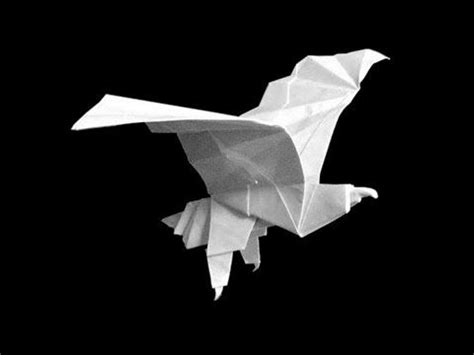 Origami Eagle Easy - origami eagles and how to fold on
