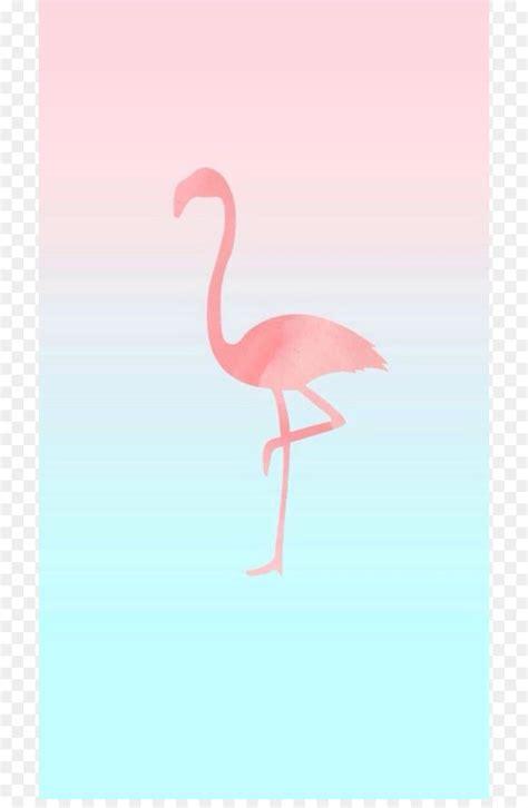 I Phone Flamingo flamingo wallpaper iphone many hd wallpaper