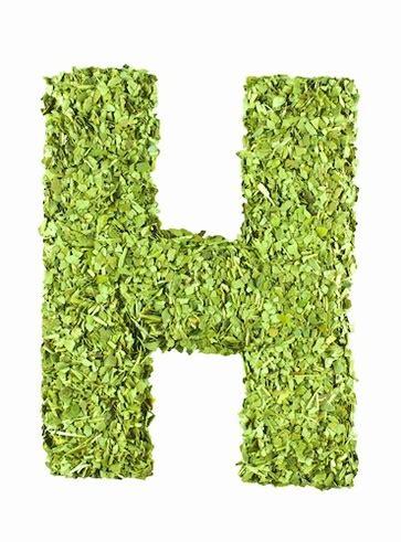 alimenti ricchi di biotina vitamina h negli alimenti