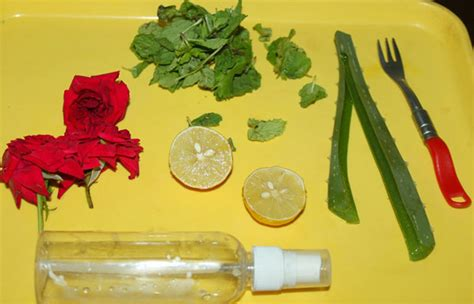 Alat Semprot Jeruk Nipis Cytrus Spray Lemon Jeruk Spray 3in1 yuk bikin spray untuk segarkan wajah berminyak merdeka