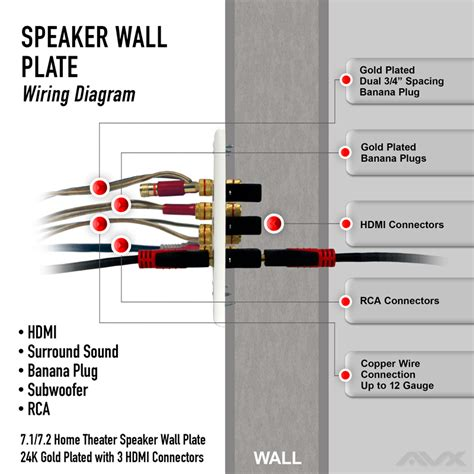 paramax surround sound speaker wiring diagram wiring