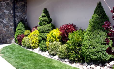 landscaping with flowers and shrubs great basin natives three favorite shrubs