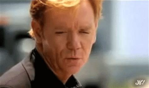 Put On Sunglasses Meme - happy birthday david caruso 58 one liners gifs and