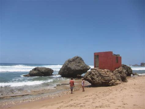 beauty shows east coast barbados shows its wild side on east coast where surfers