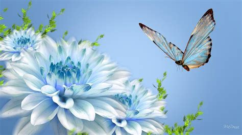 Wallpaper Flower And Butterfly | butterfly and flower wallpapers wallpaper cave