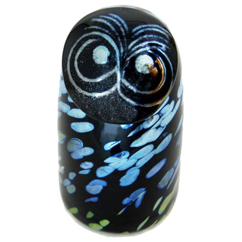 Black Owl Home sooty owl