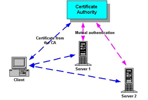 design certificate authority opinions on certificate authority