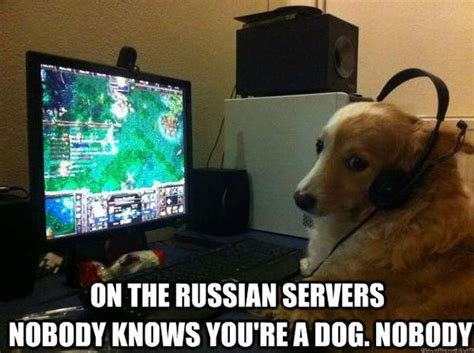 on the nobody knows you re a on the russian servers nobody knows you re a nobody meme collection