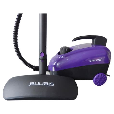 bed bug steam cleaner steamer for bed bugs for those looking for an affordable