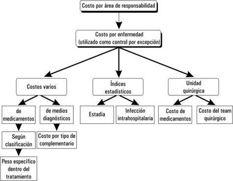 propuesta de un sistema de costo por procesos para las logros y perspectivas del sistema de costos hospitalarios