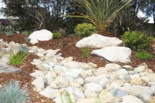 australian native garden ideas native landscape design