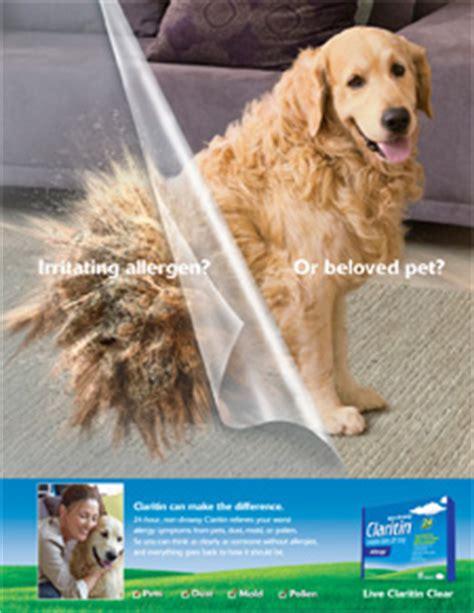 claritin for dogs rea creative director