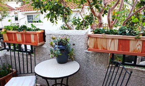 best planters best plants for railing planters iimajackrussell garages
