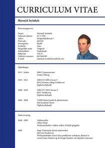 best 25 curriculum vitae formatos ideas on pinterest