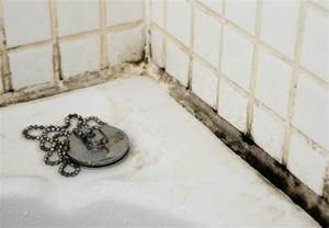 mold in bathroom shower black mold in bathroom what to do about it bob vila