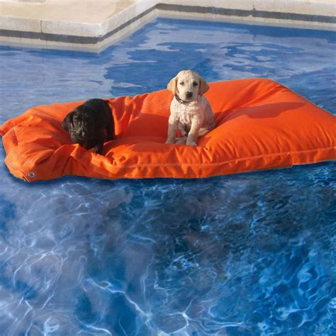 floating dog bed kai pet pool floats the green head