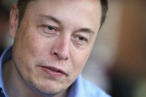 elon musk venture capital elon musk to sell and promote brand new solar roofs behind