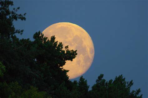 moon dstring
