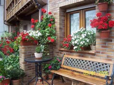 imagenes de jardines con geranios imagenes bonitas con flores y plantas p 225 gina 24