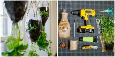 turn plastic bottles   cutest indoor herb