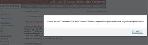 xss tutorial w3schools f4l13n5n0w webgoat dom based xss