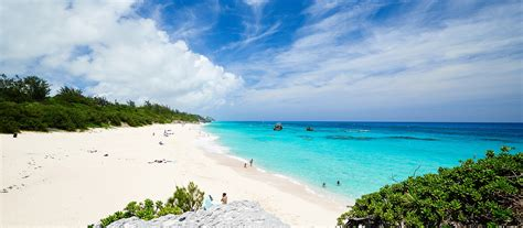 beaches  bermuda  bermudas pink sand beaches