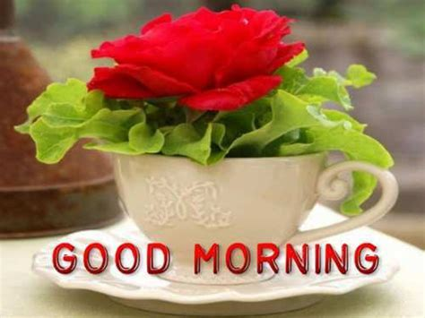 25 Gud Morning SMS, Greetings In Hindi For Girlfriend / Wife