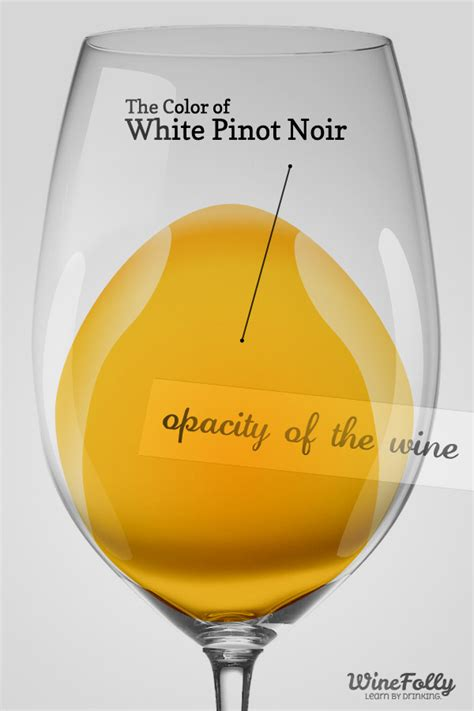 chardonnay color the guide to white pinot noir wine folly