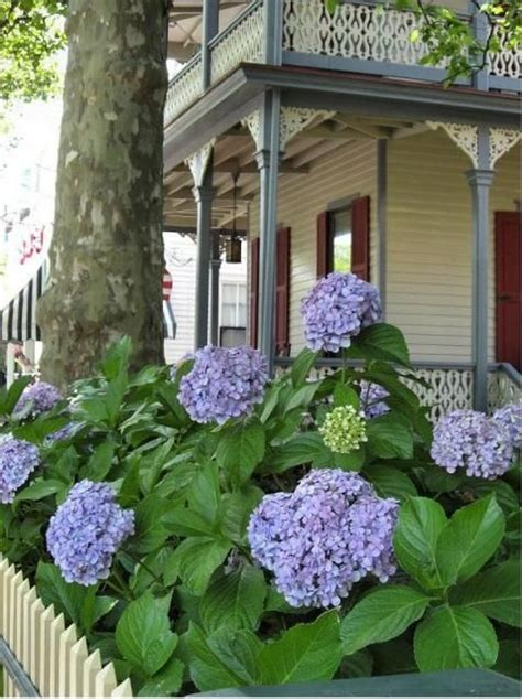 Garden Cottage Morristown by The World S Catalog Of Ideas