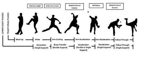 pichr of hair stlys step by step influence of stride length on mechanics of pitching