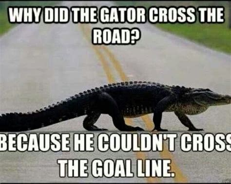 Funny College Football Memes - 138 best images about football jokes on pinterest