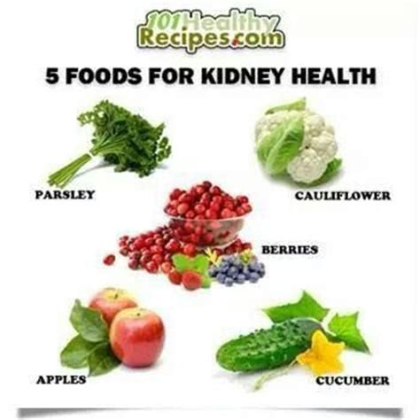 food kidney disease 17 best images about renal diet and recipes for kidney failure on renal