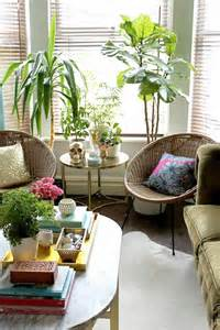 living room plant plants determine your ambience decoration your living room