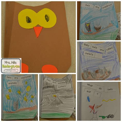 kindergarten lesson on texture and pattern owls owl lesson plans peek at my week mrs wills