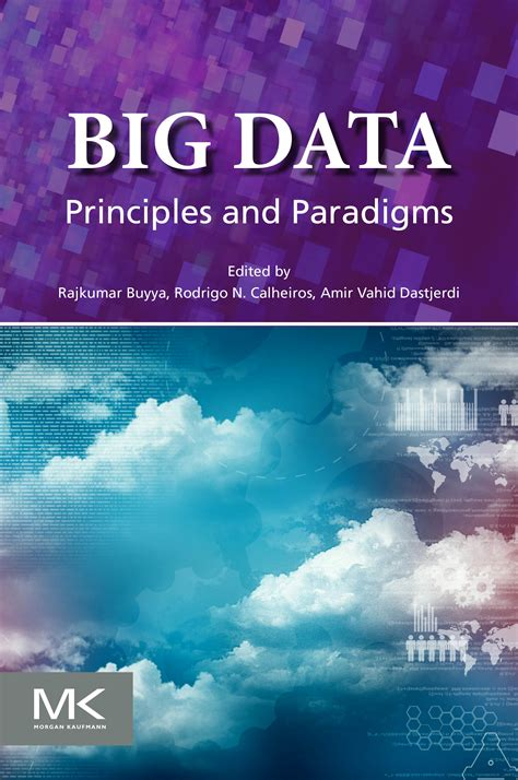 big data big dupe a book about a big bunch of nonsense books book big data principles and paradigms