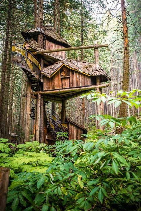 462 best treehouse life images on pinterest treehouses