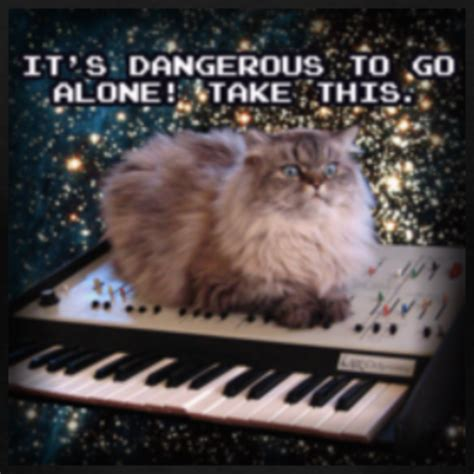 image 64440 cat on a keyboard in space know your meme