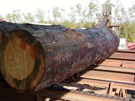 wilson lumber wilson lumber in milton wilson lumber 11117 highway 90