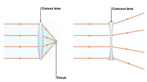 diagram of concave and convex lens standard grade bitesize physics light and sound