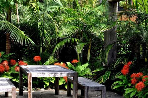 Subtropical Garden Design Ideas 311 Best Projects To Try Images On Tropical Gardens Landscaping And Backyard Patio