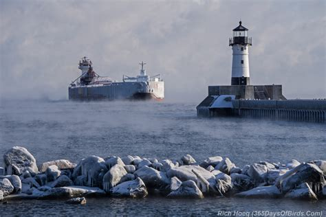 lake superior sea smoke sea smoke deep freeze birding on the arctic riviera 365