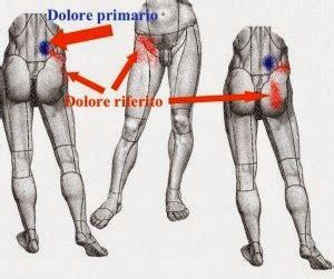 dolore interno coscia inguine terapia dolore interventistica vertebrale