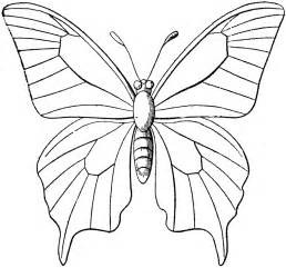 Butterfly Outline Printable by Butterfly Outline Clipart Etc
