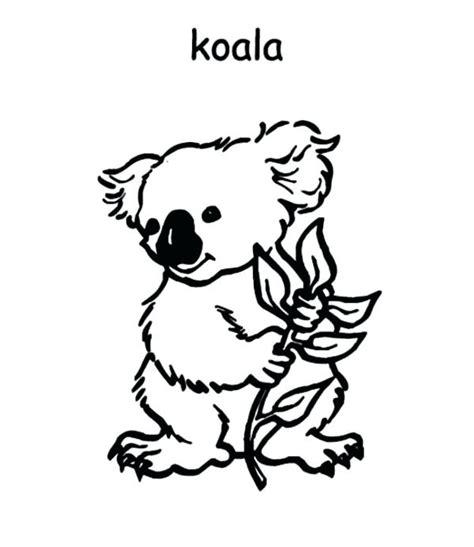 koala ballet coloring pages koalas coloring pages koala animal coloring pages koala