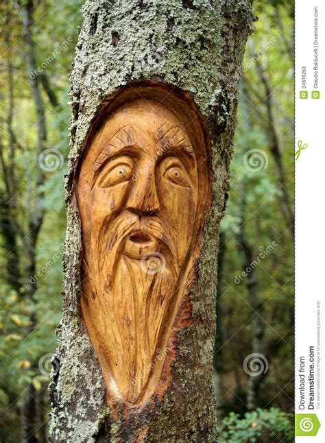 face carved   tree stock  image